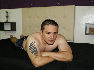 GELIER camshow anal live